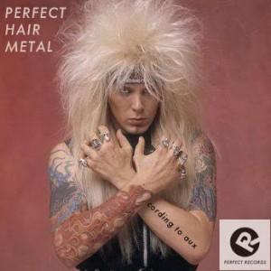 Perfect-Hair-Metal
