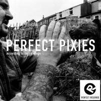 Perfect-Pixies