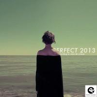 Perfect Vooruitblik 2013