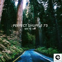perfect-shuffle-73