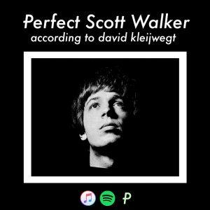 perfectscottwalker