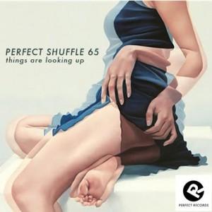 perfect-shuffle-65