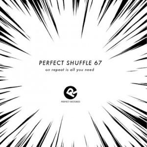 perfect-shuffle-67