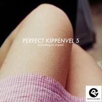 Perfect-Kippenvel-5