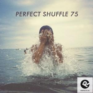 Perfect-Shuffle-75
