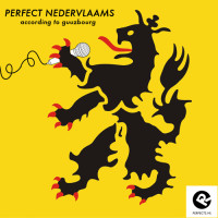 perfect-nedervlaams-500
