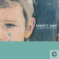 perfect-snik