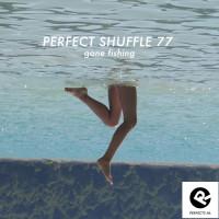 perfect-shuffle-77__