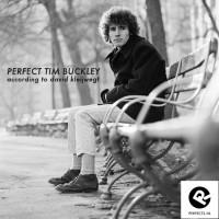 perfect-tim-buckley__