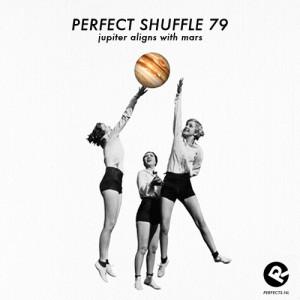 perfect-shuffle-79__