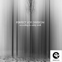 perfect joy division__