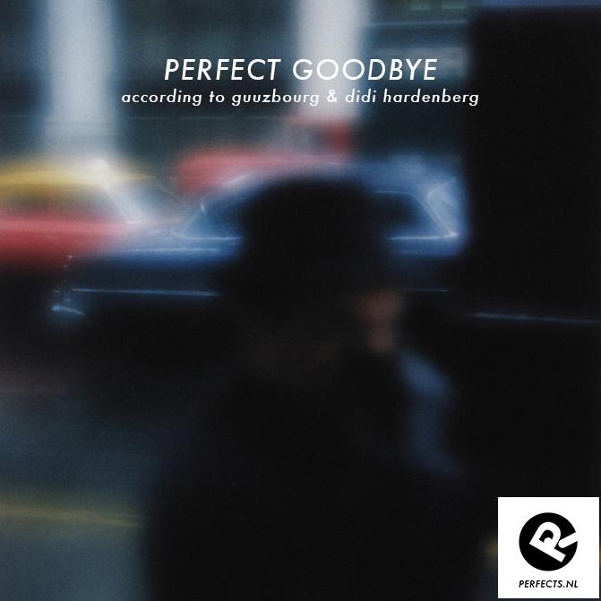 Perfect Goodbye door Didi Hardenberg en Guuzbourg