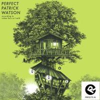 perfect-patrick_watson_ruben