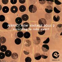 new_vintage_soul_2