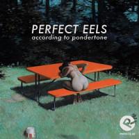 perfect_eels_