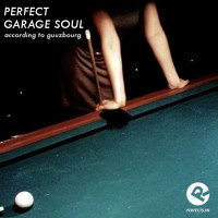 perfect_garagesoul