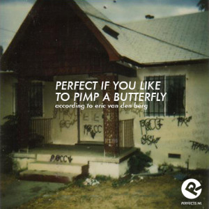 perfect_if_you_like_to_pimp