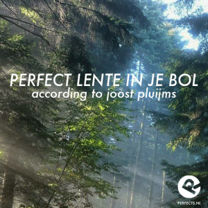perfect_lente_in_je bol