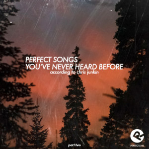 perfect_songs_never_2
