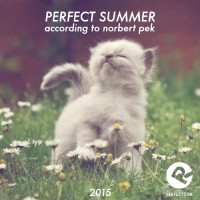 perfect_summer_2015