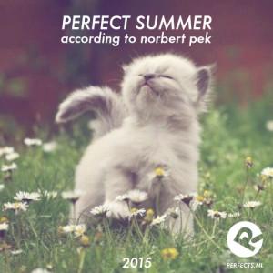perfect_summer_2015