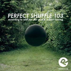 perfect_shuffle_103