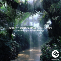 perfect_sunbeams