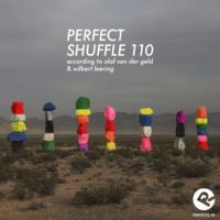 perfectshuffle_110