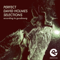 perfect_david_holmes_selections