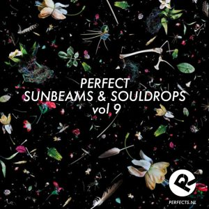 perfectsunbeams9