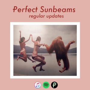 Perfect_Sunbeams