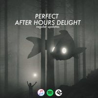 perfect_afterhours_delight