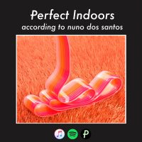 perfect_indoors